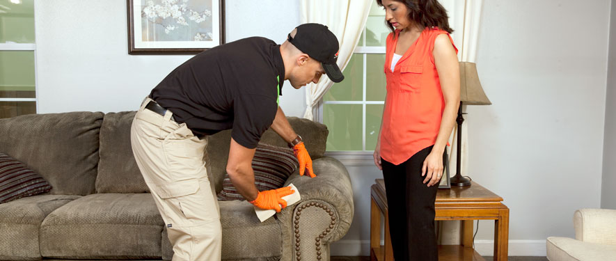 Richmond, IN carpet upholstery cleaning